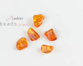 5 pieces of Amber, Baltic Amber loose Beads // MO055