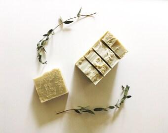 Peppermint Eucalyptus Loofah Soap | Vegan | Cruelty Free | All Natural