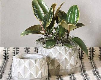 Cement Planter, Sago Palm Cement Planter, Succulent Planter, Gift for Her, Cement Decor, Concrete Decor, Cement Home Decor, Floral Supply
