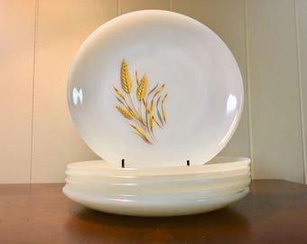 Fire King Milk Glass Salad Plates - Set of 6 / Anchor Hocking Wheat Pattern