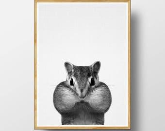 Chipmunk Print, Nursery Animal Decor, Nursery Animal Print, Nursery Animal Art, Nursery Decor, Nursery Art Print, Woodlands Nursery