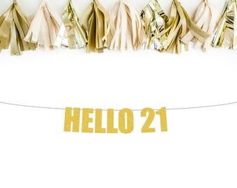 Hello 21 banner | 21st birthday banner | 21st birthday decorations | 21st birthday party | birthday decorations | birthday party