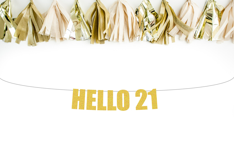Hello 21 banner 21st birthday banner 21st birthday