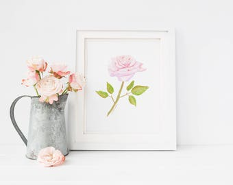 We Remember, Pink Rose Watercolor Painting, Digital Art