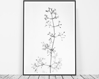 Black and White Photography, Scandinavian Print, Flower Print, Flower Photography, Affiche Scandinave, Flower Art, Macro Photography