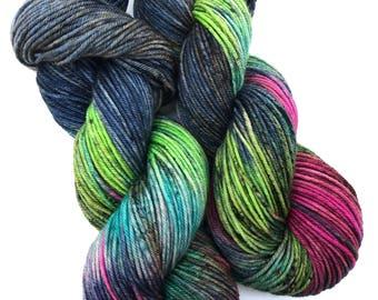 Alaqua- DK weight, Superwash Merino, 250 yards, Hand dyed Yarn