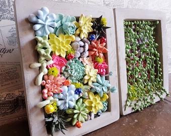 No.83 Clay Art * Handmade Air Dry Clay Succulents Home Decor Photo Frame