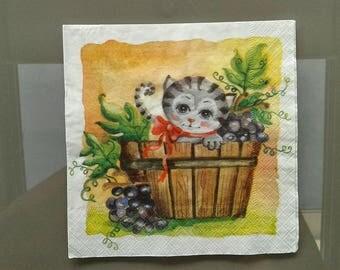 set of 2 paper towels, kitten Harvester