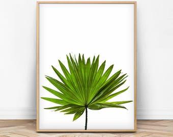 Leaf Print, Tropical Leaf, Tropical Decor, Botanical, Leaf Printable, Green Leaf Decor, Leaf Photo, Tropical Photo, Digital Photo Printable