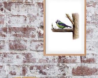 Awaiting' Bird on branch, mix media Artwork,  Bird art, Garden bird, NURSERY ART