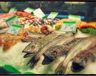 Fish in La Bouqueria Market Postcard