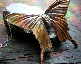 Real Electroformed Moth Necklace