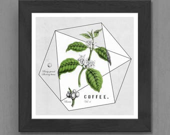 Geometric Coffee Botanical Printable, Instant 5x5in. Download