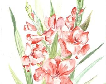 gladiolus - original watercolor painting