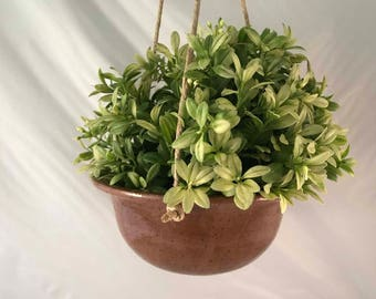 Medium Brown Hanging Planter - Stoneware