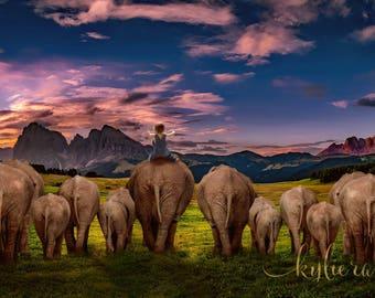 Digital Backdrop, Elephant, Photo Manipulation, Digital Image, Elephant Background, Elephant Backdrop, Overlay, Photo Backdrop,Digital Image
