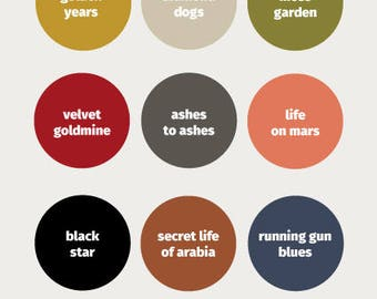 David Bowie inspired paint chart