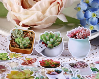 Succulent Plants Scrapbooking Stickers, planner stickers,DIY Craft stickers