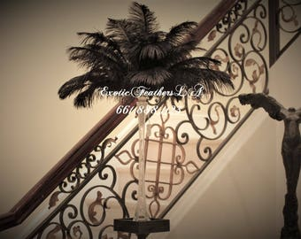 "Special Sale U.S.A. 1-100 Pcs. BLACK Ostrich Feathers 15/18"" long TAIL Feather Centerpiece, Wedding,  Roaring 20's,Table centerpiece,"