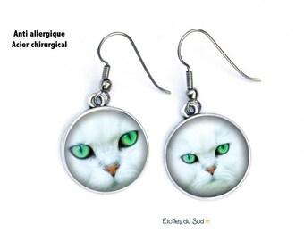 Boucles d'oreilles cabochons chats, chats yeux verts ,  crochets en acier chirurgical ,ref.316