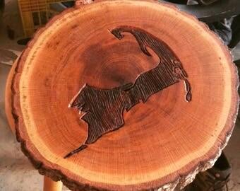 Cape Cod Oak
