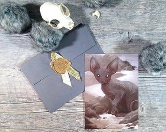 Sphinx Cat - Art Print - Fantasy Illustration - Animal Wildlife Painting - Hairless Cat - Imaginative Realism - Home Wall Decor