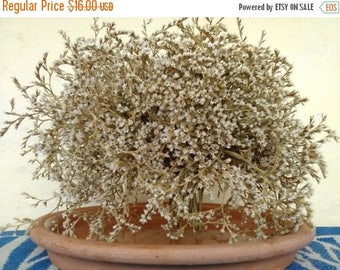 ON SALE, Bouquet of dried flowers, for decoration, for decoration of colored spots, rock gardens, decoration of fresh and dry bouquets.