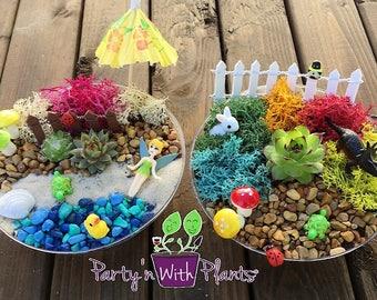 Fairy Garden Kit, Succulent, Succulent Fairy Garden, Fairy Garden Party, Fairy Craft, Fairy Garden Birthday Party, Mini Zen Garden, DIY Zen