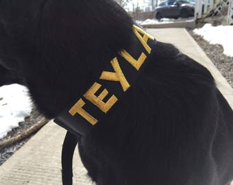 custom embroidered nylon martingale slip leash personalized agility slip leash