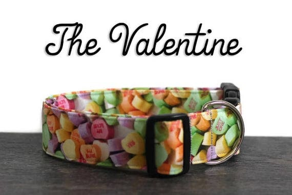 Valentine heart dog collar