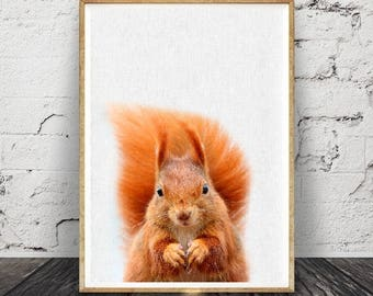Écureuil imprimé, pépinière bois murale Art déco, animaux de la forêt, imprimable téléchargement numérique, bébé imprimés,