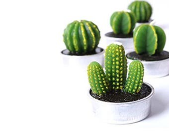 Cactus candle, cactus tea lite, cacti, cactus, artisan soap, candle, handmade, home decor, gifts