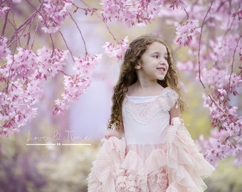 Blossom Didital Backdrop / background / swing / Instant Downloads
