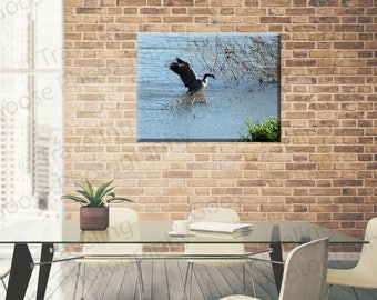 Goose Ornament Fine Art Photography, Canvas Gallery Wrap, Wild Bird Fine Art Print, Wildlife Wall Decor, Gifts for Her, Home Decor,