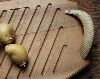 Vintage 70s with wild type old original bighorn sheep horns cutting board