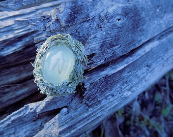 SALE - Tooth and moss ring