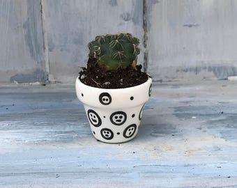 Mini cactus pot