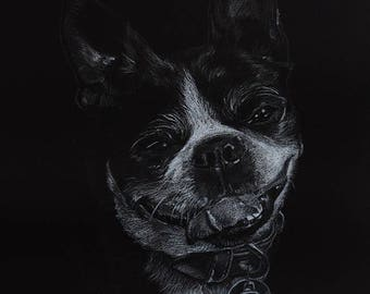 Custom black & white portrait / dog portrait / cat portrait / animal portrait / colored pencil drawing / grayscale drawing