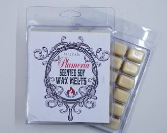 Wax Melts, Wax Tarts, Soy Wax Melts, Scented Soy Candle Melt, Scented Cubes, Wax Warmer Tarts, Soy Wax, Plumeria Scent 1 Piece 24 Cubes