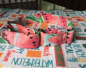 Watermelon Martingale Dog Collar
