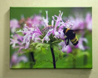 Flower and a Bee Canvas