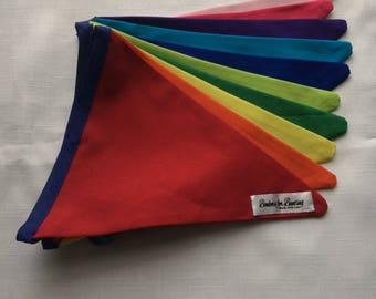 Large Rainbow bunting