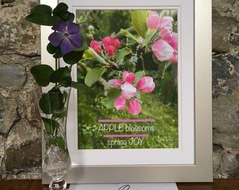 Apple Blossom in Springtime/nature slogan wall art/ Ireland