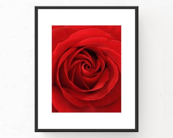 Rose Photograph, Rose Print, Digital Download, Rose Art Print, Rose Poster, Red Rose, Red Decor, Flower Print, Red Print, Printable Wall Art