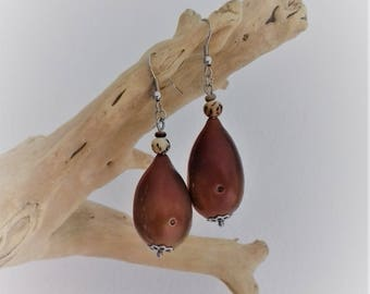 Stainless steel earrings made of coconut and Palm tree beads and bottle.