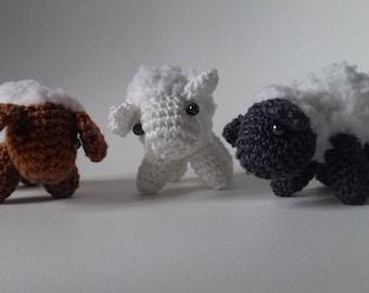 little sheep cotton ride