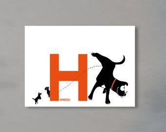 Alphabet Letter H-the alphabet of the animals