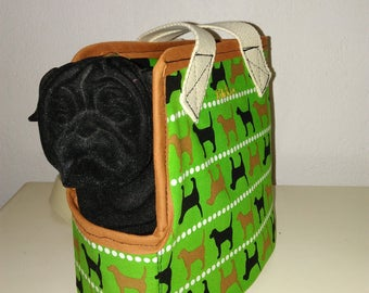FRONT of TRANSPORT bag for small dog or cat