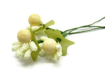 3 bunches with beige ivory berries on stems approximately 2.5 cm