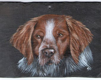 the Spaniel acrylic animal painting